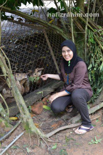 zoo taiping3