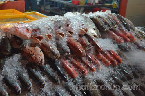 Senibong-pilihan ikan segar