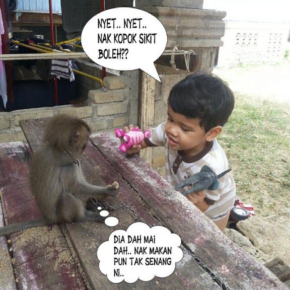 Bela Monyet