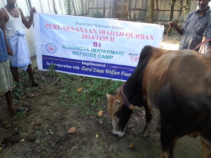 EZ Qurban Rohingya