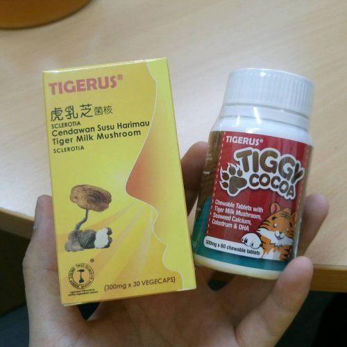 Tigerus Sclerotia & Tiggy Cocoa